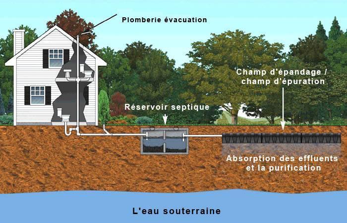 utilité d'entretien fosse septique